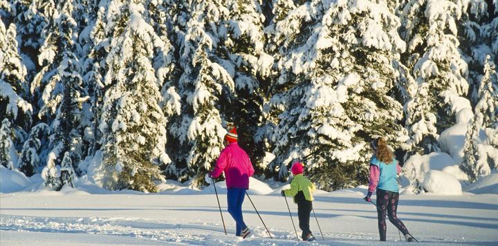 冬奥会掀冰雪旅游热潮,春节期间滑雪场游客接待量增长超10%
