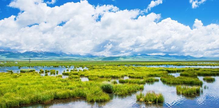 清明假期全國接待游客1.12億人次,旅游收入478.9億元