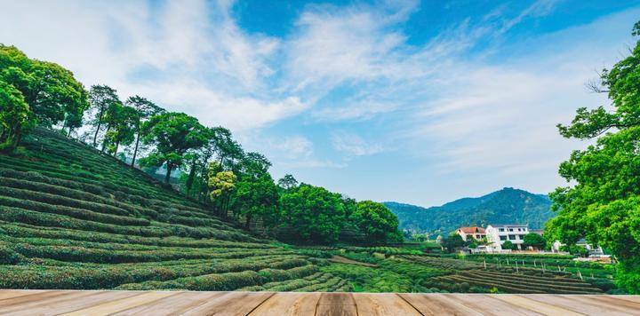 乡伴文旅集团宣布获挚信资本2亿元B轮融资