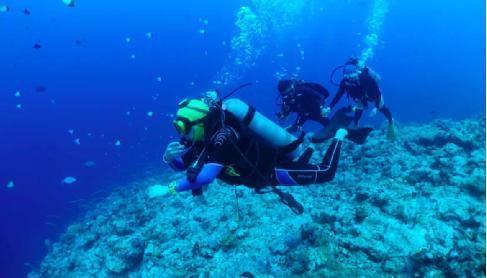 中国人潜水考证增速是全球平均水平8倍,飞猪平台兴起潜水热