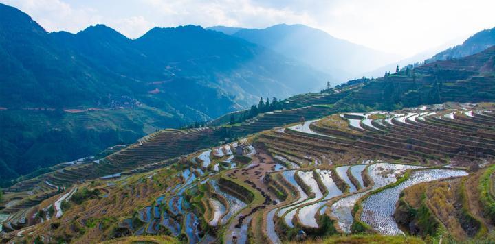 """中國非遺與旅游融合發展論壇舉辦:為""""非遺+旅游""""融合發展與助力鄉村振興把脈開方"""