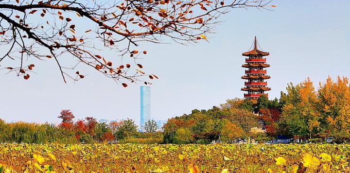 徐州推动旅游业:通过国家级度假区验收一次性奖励100万元