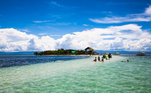 今年首月逾11万中国游客入境菲律宾,同比增近三成