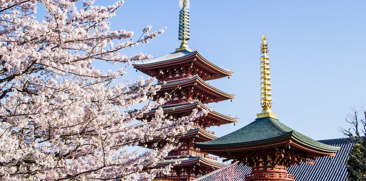 """不賣""""物美價廉"""",只賣""""貨真價實"""" ——日本旅游的啟發與思考"""