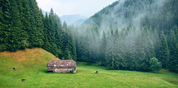 乡村振兴旅游业市场前景研究报告:预计2021年乡村旅游收入规模破万亿