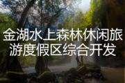 金湖水上森林休闲旅游度假区综合开发