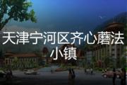 天津宁河区齐心蘑法小镇