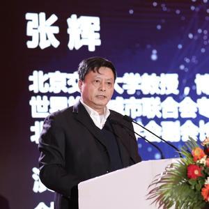 张辉- 世界旅游城市联合会专家委员会副主任