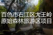 百色市右江区大王岭原始森林旅游区项目