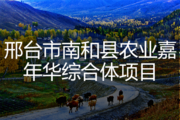 邢台市南和县农业嘉年华综合体项目