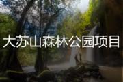 大苏山森林公园项目