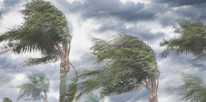 天气宝创始人兼CEO向涛:运用精细化气象数据,为出行增加天气保障