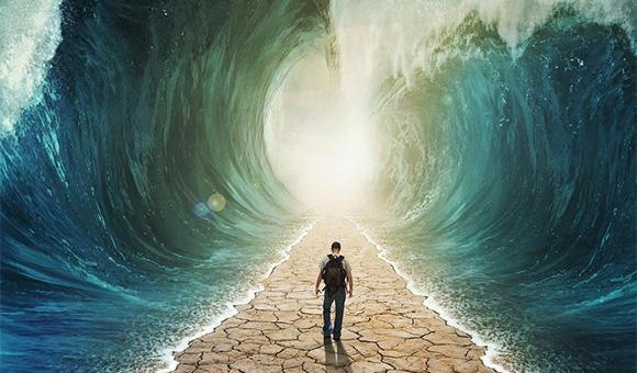 如果攜程決心戰略性虧損到底,去哪兒怕是只剩一條路可走