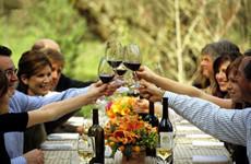红酒之旅:葡萄酒的世界地图
