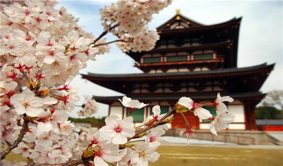 众信旅游战略收购日本旅行社,进一步完善目的地布局